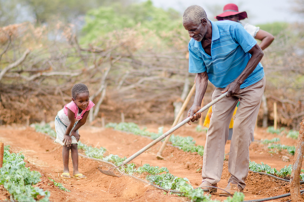 Our Humanitarian Quest: Food and Agriculture